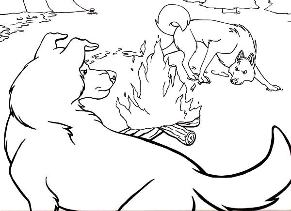600x436 Call Of The Wild Coloring Pages Coloring Sun