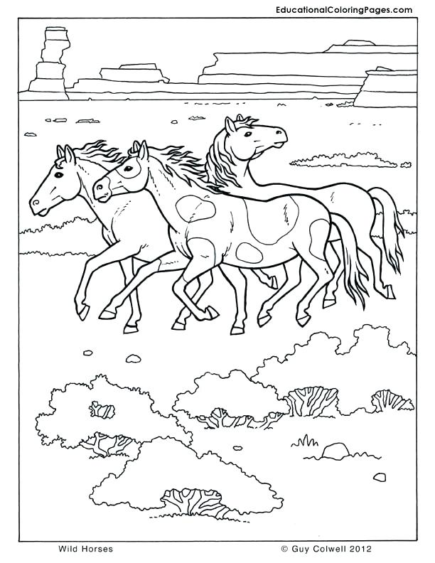 612x792 Wild Horses Coloring Pages Horse Coloring Pages Printable Fee