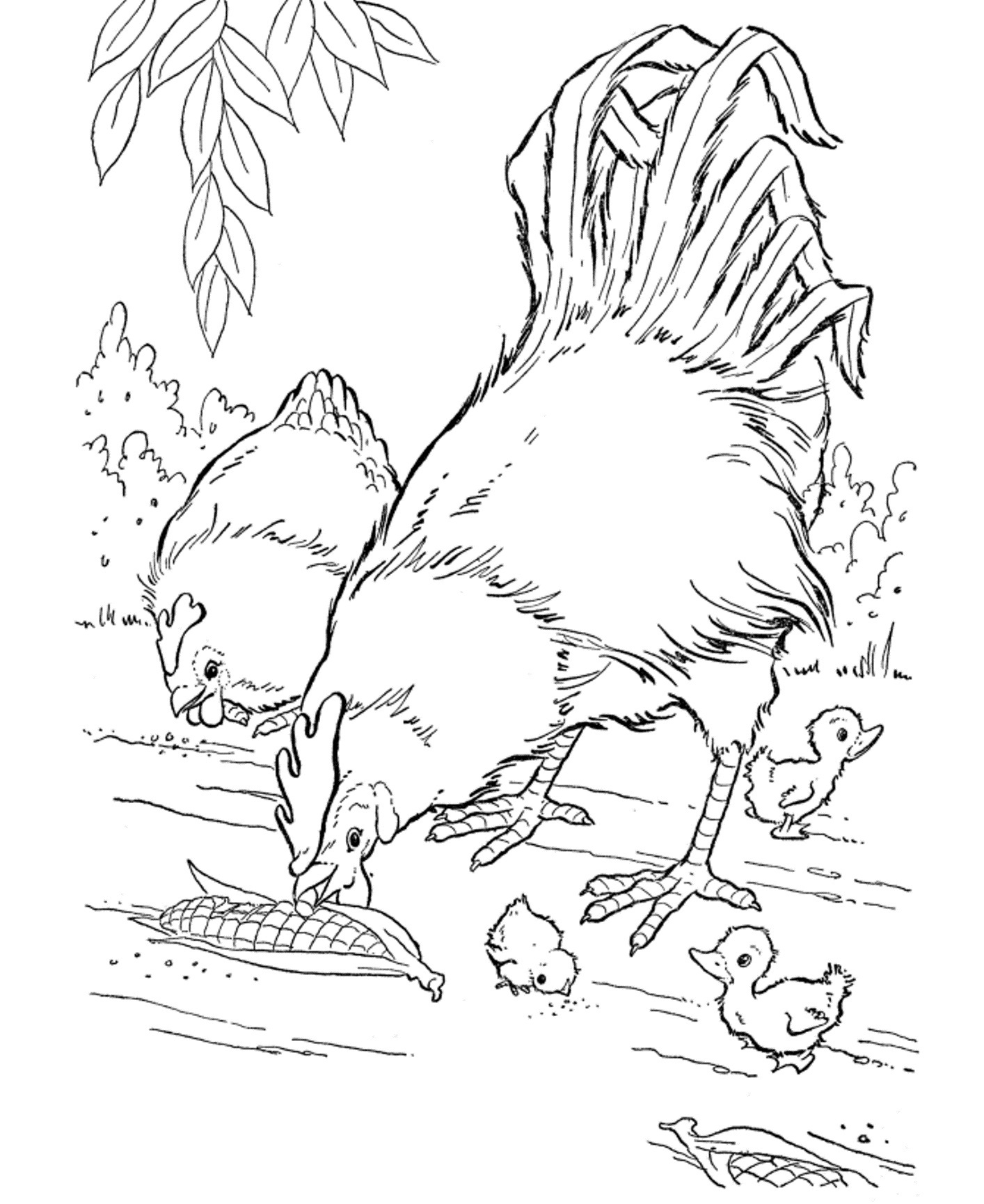 1414x1730 Professional Pig On A Farm Coloring Page Print