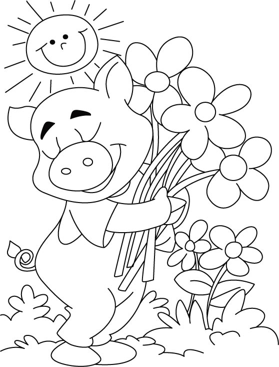 558x732 Top Pig Coloring Pages
