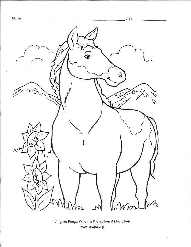 640x828 Wild West Coloring Pages