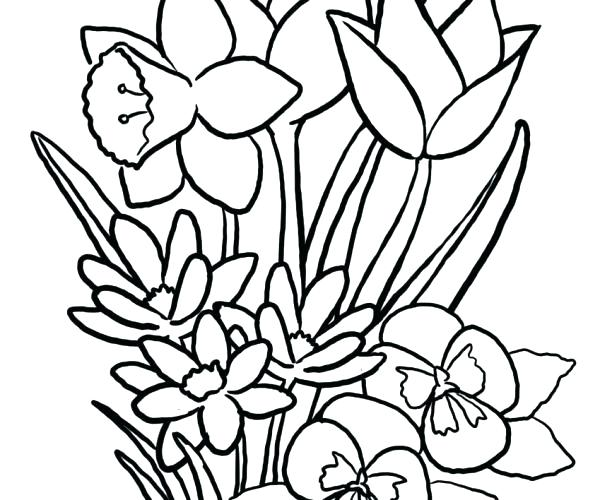 600x500 Wildflower Coloring Pages About Coloring Pages Celebrating