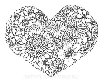 The Best Free Wildflower Coloring Page Images Download From 50 Free