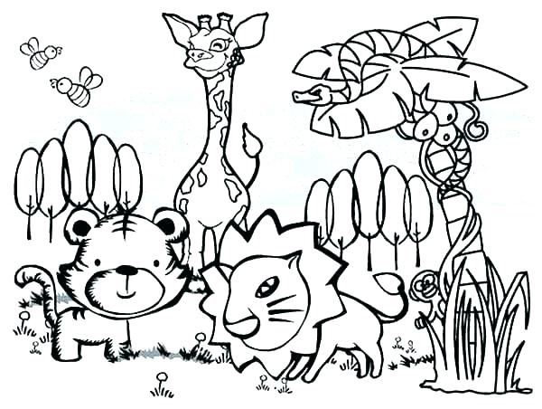 600x452 Forest Animals Coloring Pages Wildlife Coloring Pages Forest