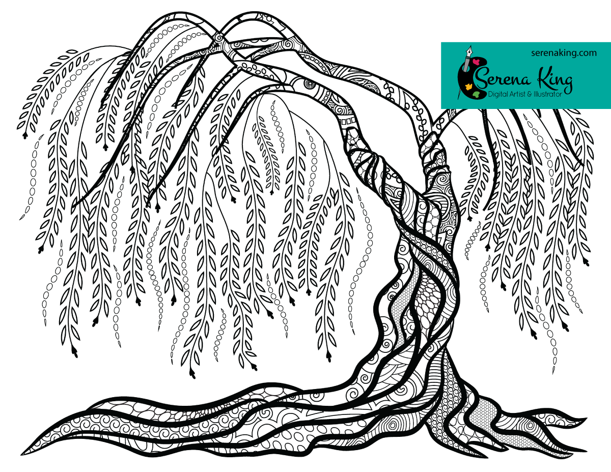 1200x927 Weeping Willow Tree Coloring Page