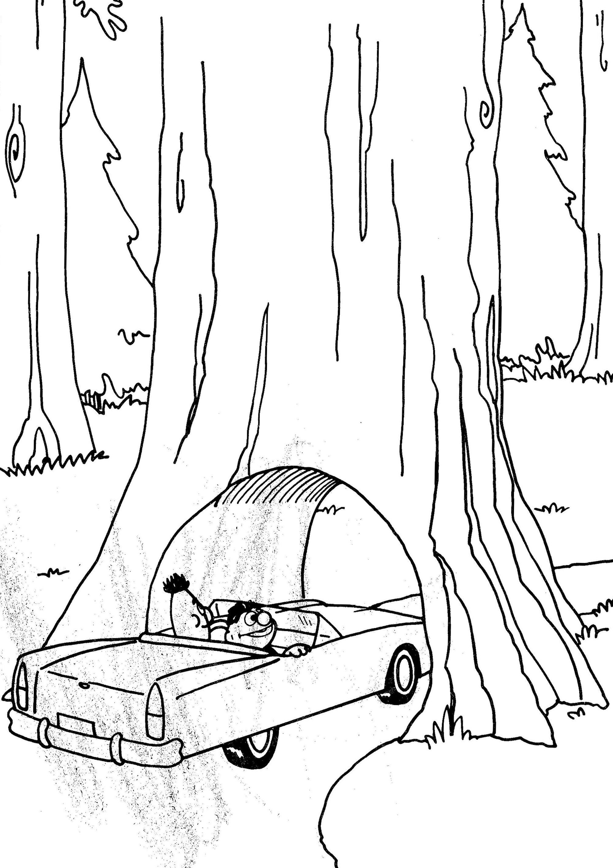 2000x2829 Coloring Page Willow Tree