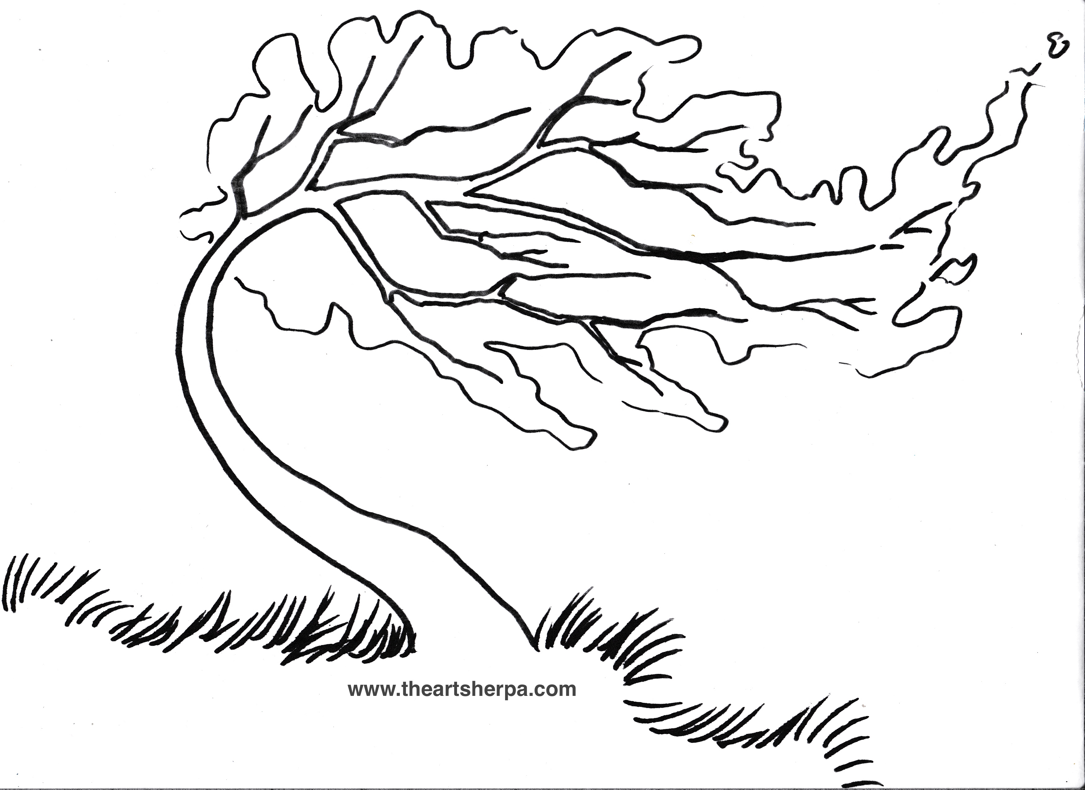 3504x2552 Coloring Page Willow Tree Inspiration Trace Able For The Rainbow
