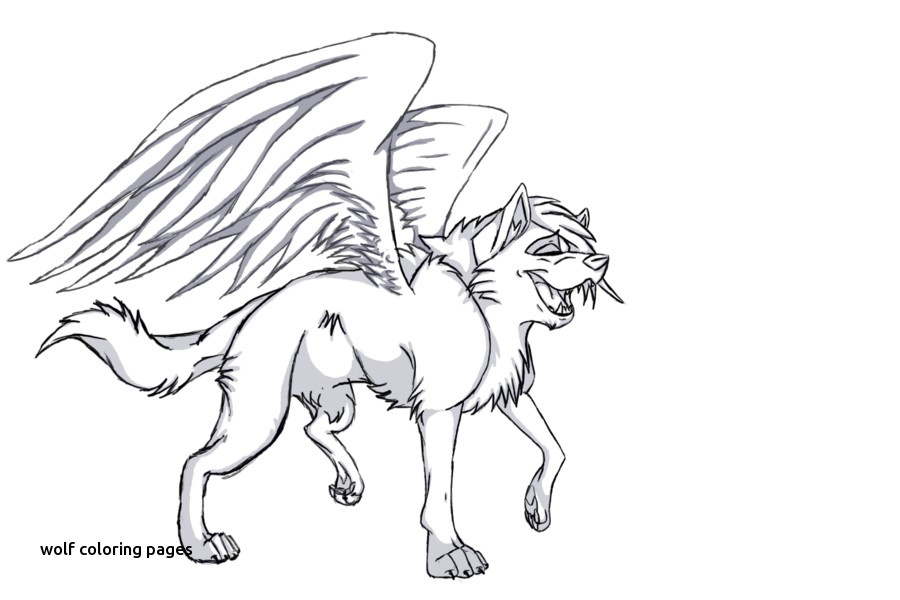 900x600 Pictures Of Winged Animals Wolves And Cats For Wolf Coloring Pages