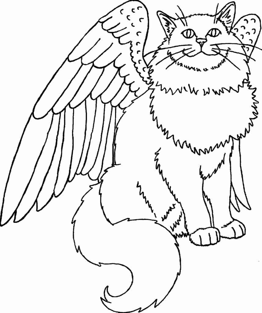 858x1023 Cute Winged Unicorn Coloring Page Free Printable Pages Amazing