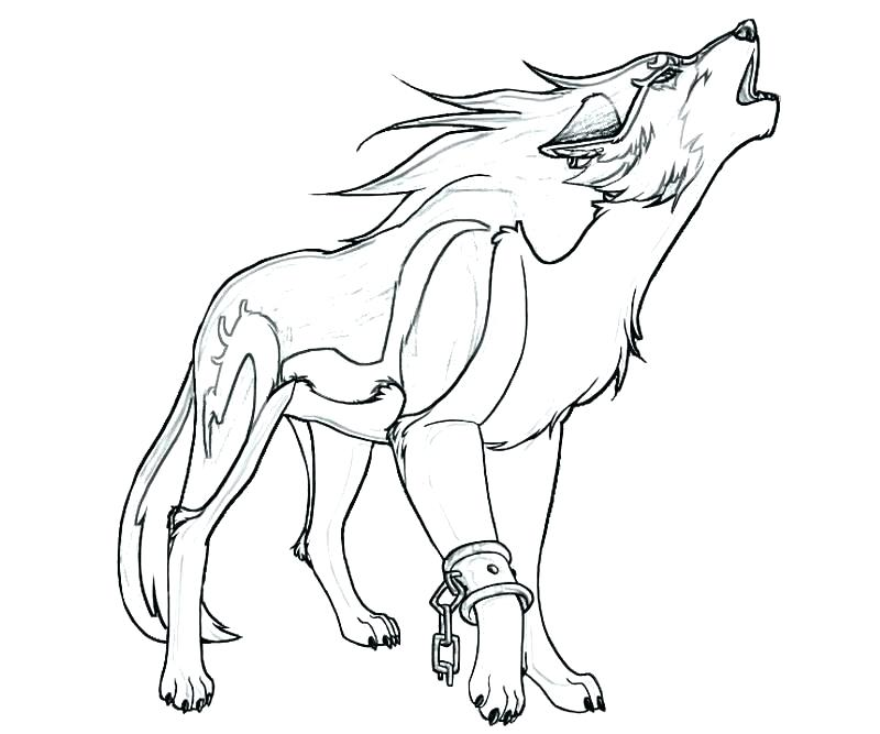 800x667 Winged Wolf Coloring Pages
