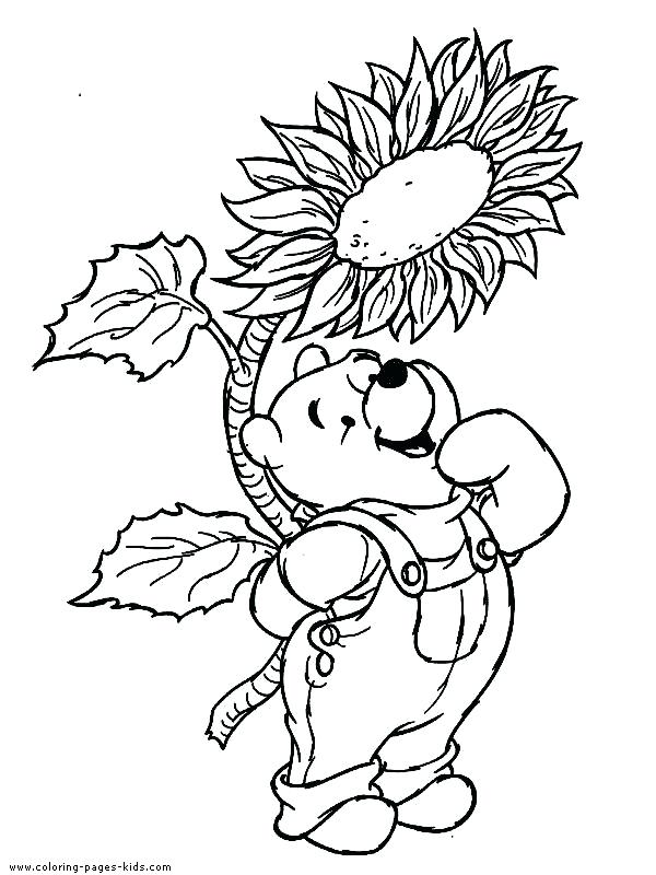 600x800 Pooh And Friends Having Picnic Coloring Pages Printable