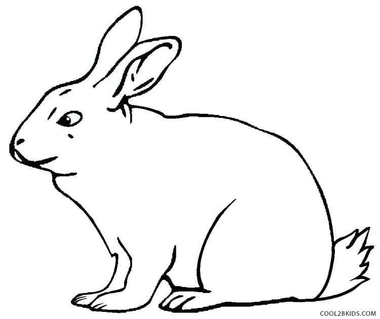 Winnie The Pooh Rabbit Coloring Pages At Getdrawings Com Free For