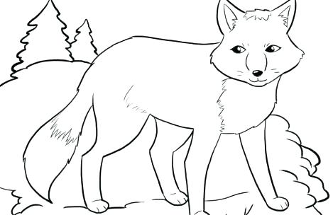 469x304 Free Printable Farm Animals Colouring Pages Home Improvement