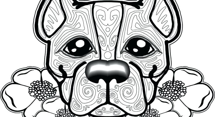 735x400 Coloring Pages For Kids Valentines Dog Winter Coats Page Coat