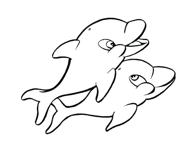 800x661 Dolphin Tale Coloring Pages Winter The Dolphin Coloring Pages
