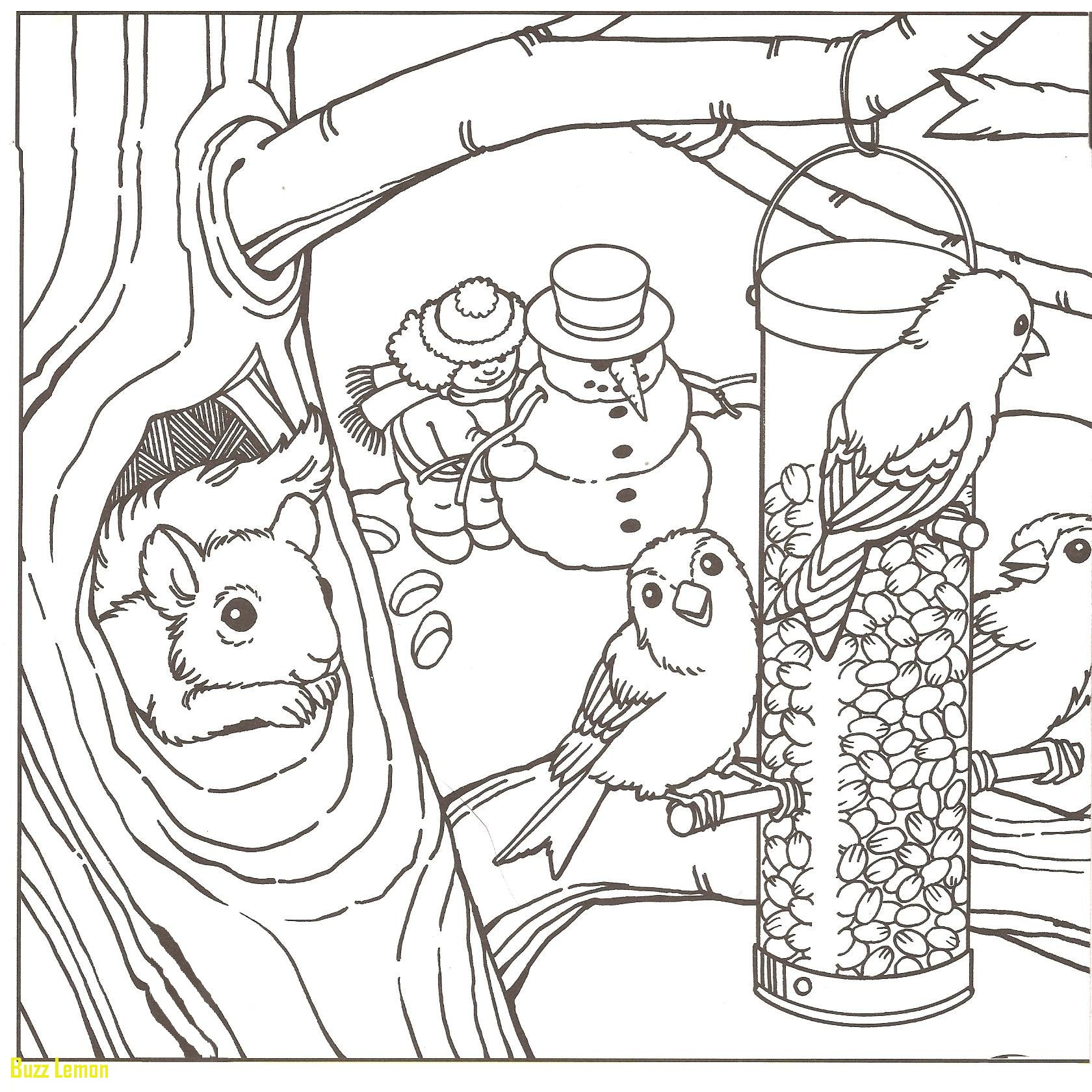 1680x1680 Lovely Coloring Page Winter Scene Buzz Coloring