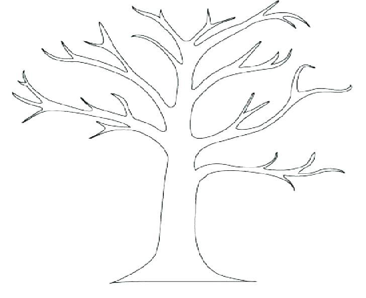 728x593 Oak Tree Coloring Page For Kids Color Luna Oak Tree Coloring Page