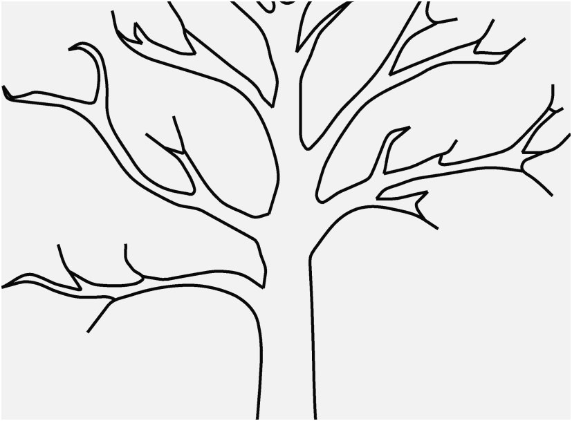 827x609 The Perfect Stock Tree Coloring Pages Marvelous
