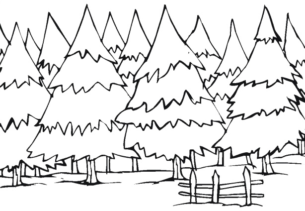 614x424 Tree Coloring Pages Winter Tree Coloring Pages Kids Coloring Pages