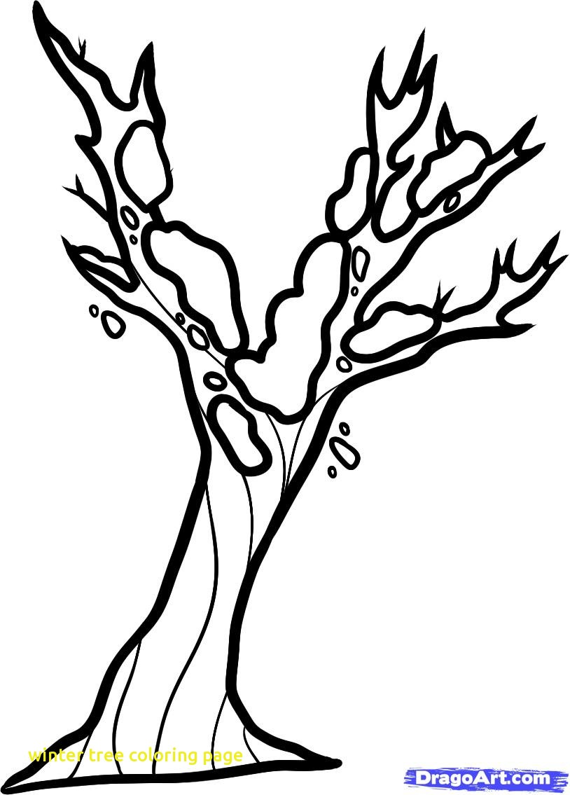 814x1135 Trend Winter Tree Coloring Page Autumn Veles M