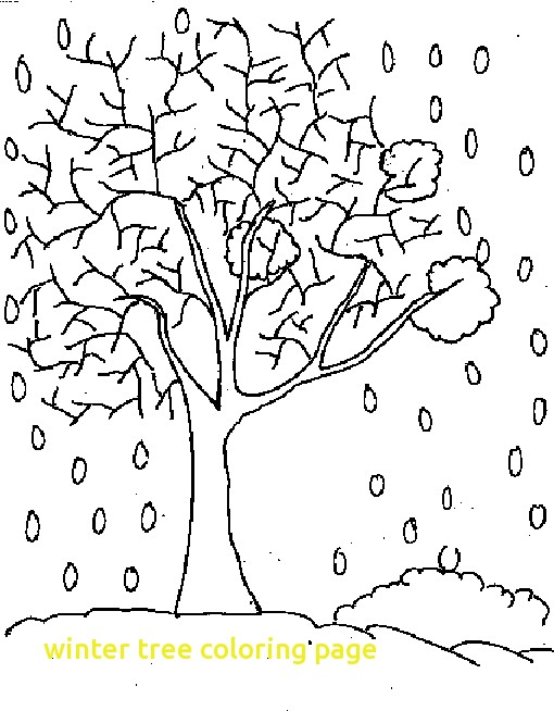 510x654 Winter Tree Coloring Page