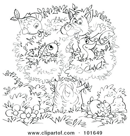 450x470 Badger Coloring Pages Honey Badger Line Drawing Wisconsin Badger