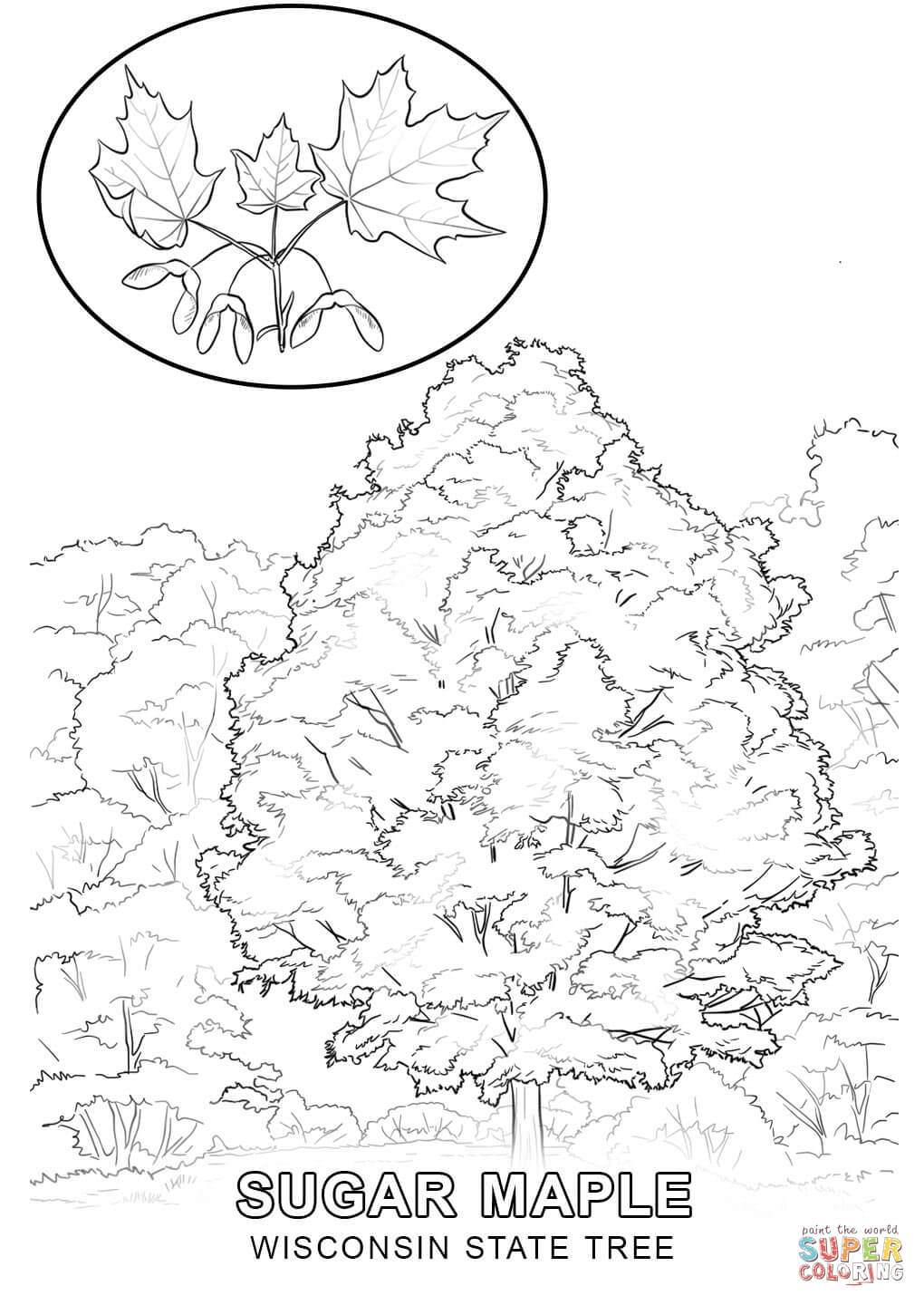 1020x1440 Wisconsin Flag Coloring Pages