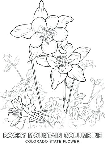 340x480 Wisconsin State Flag Coloring Page Coloring Pages For Kids Animals