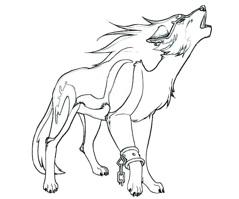 800x667 Wolf Pack Coloring Pages Peter And The Wolf Coloring Pages Peter