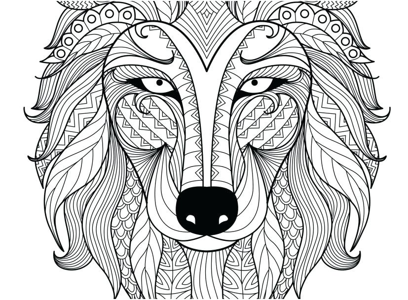 827x609 Wolf Coloring Book Gray Wolf Coloring Page Grey Wolf Coloring