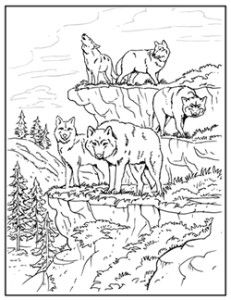 231x300 Wolf Coloring Pages For Adults