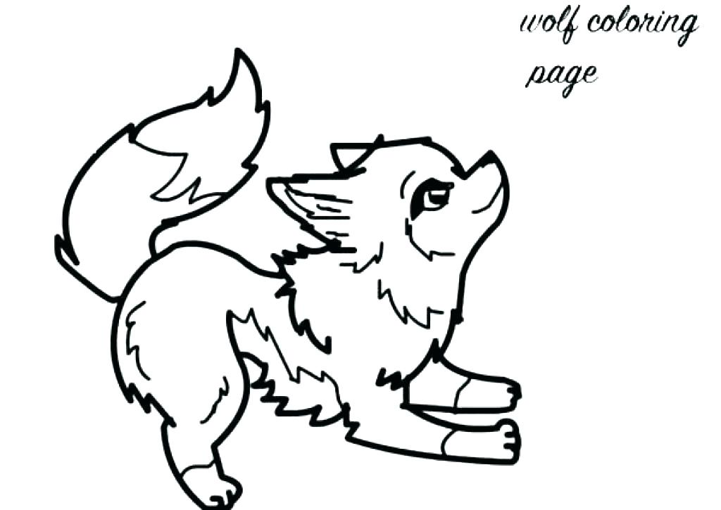 Wolf Coloring Pages For Kids At Getdrawingscom Free For Personal