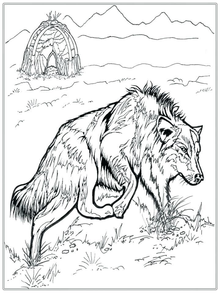 720x960 Realistic Adult Wolf Coloring Pages Free Printable Amazing Wolf