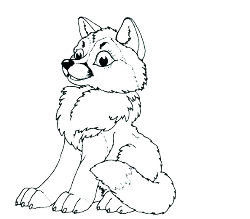 Cute Baby Wolf coloring page   Free Printable Coloring Pages   704x805