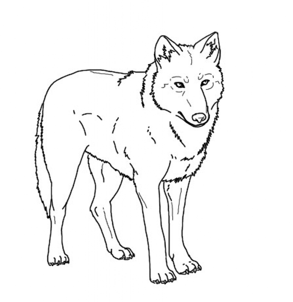 993x1024 Realistic Coloring Pages Inspirational Realistic Wolf Coloring