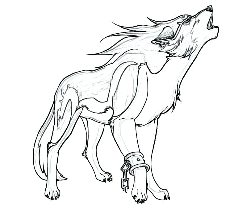 800x667 Wolf Coloring Page Wolf Coloring Pages Background Coloring