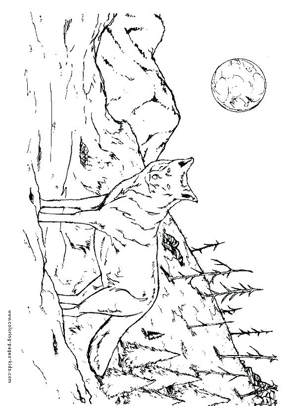 590x821 Wolf Coloring Pictures Coloring Wolf Cartoon Wolf Coloring Pages