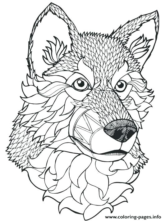 534x712 Wolf Coloring Sheets To Print Free Printable Wolf Coloring Pages