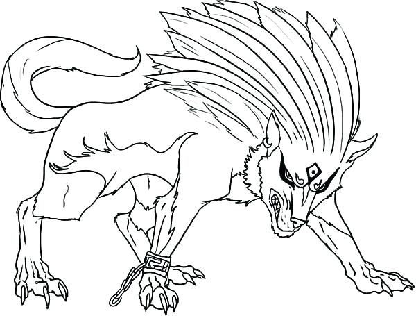 600x455 Realistic Wolf Coloring Pages Vanda