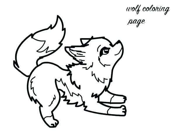 600x450 Cute Narwhal Coloring Pages Narwhal Coloring Pages Baby Fox