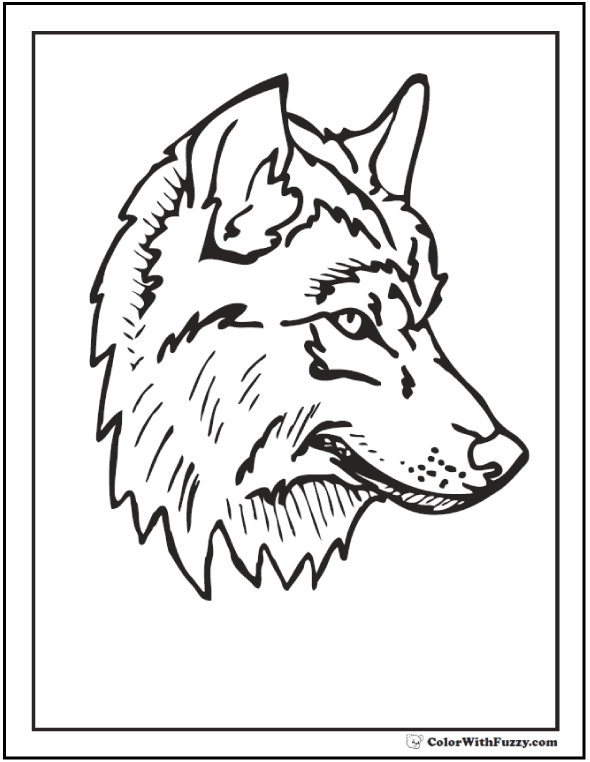 590x762 Realistic Wolf Coloring Pages Wolf Coloring Pages Print