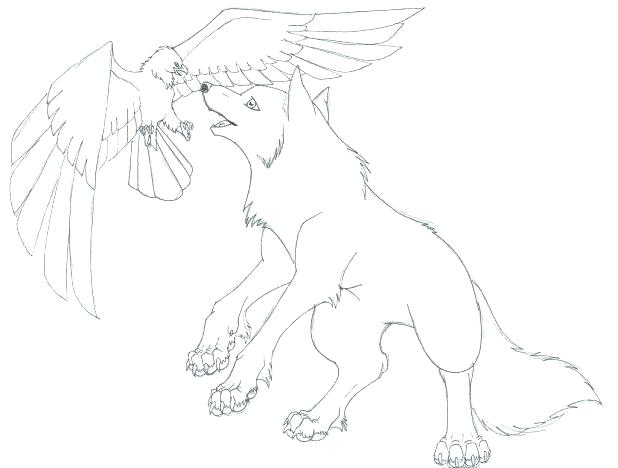 618x468 Realistic Wolf Coloring Pages Wolf Coloring Pages Printable Alone