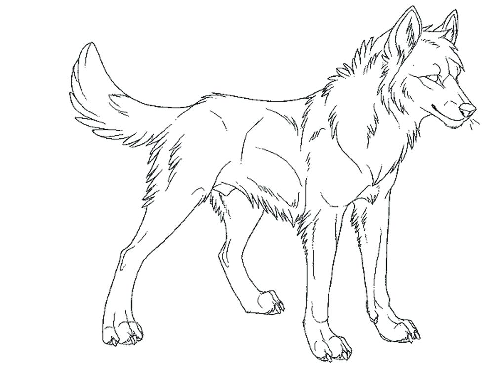 1000x750 Wolf Coloring Pages To Print Funny Wolf Coloring Page Wolf