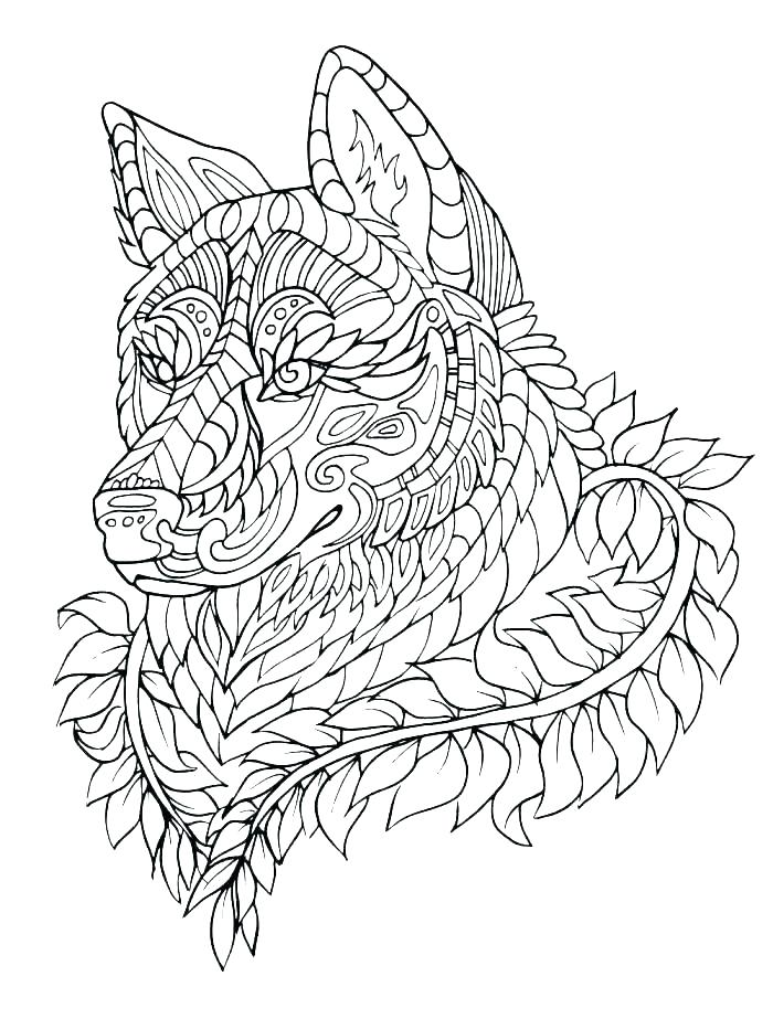 700x923 Baby Wolf Coloring Page Free Printable Coloring Pages Baby Wolf