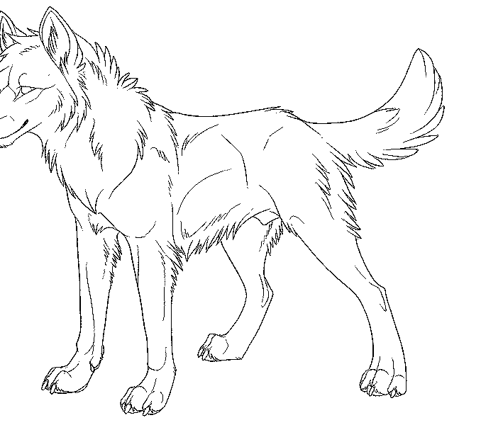 678x600 Wolf Pictures To Color And Print Coloring Page