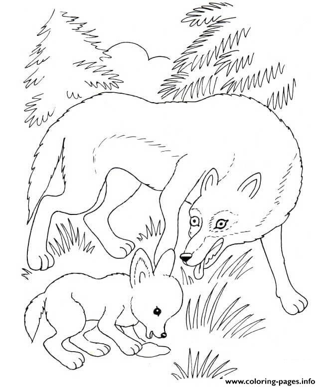 648x778 Wolf Mother And Wolf Cub Coloring Pages Printable