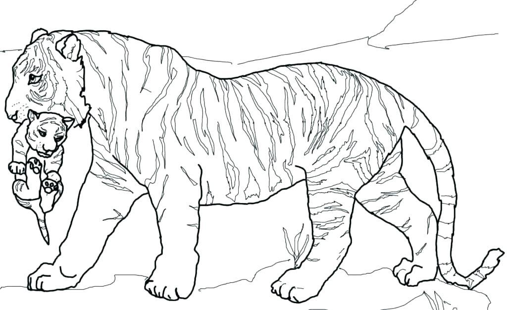 1024x626 Cub Scout Coloring Pages Tiger Cub Coloring Pages Tiger Cub Scout