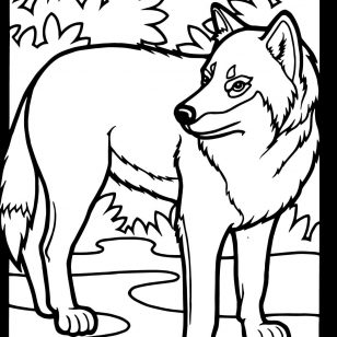 308x308 Entrancing Together With Tasty Images Of Wolf Face Coloring Page