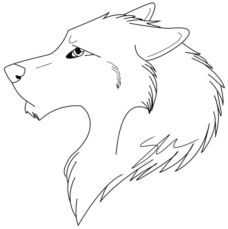 736x741 Wolf Face Coloring Pages Wolf Coloring Pages Gray Page Ba