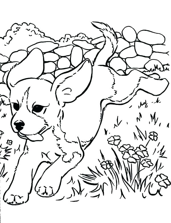 600x780 Wolf Pup Coloring Pages Coloring Page Wolf Coloring Page Wolf Face